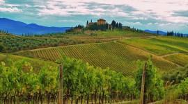 Winery In Italy Wallpaper Full HD