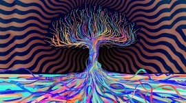 4K Trippy Photo Download