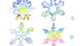Colorful Snowflakes Picture Download
