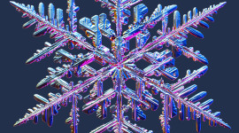 Colorful Snowflakes Wallpaper For Mobile