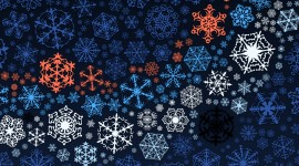 Colorful Snowflakes Wallpaper Free