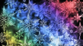 Colorful Snowflakes Wallpaper HQ