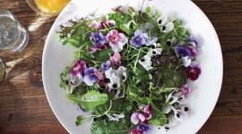 Food From Flowers For Desktop