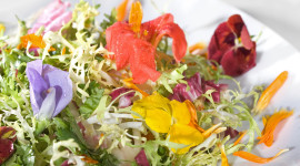 Food From Flowers Photo#1
