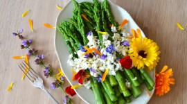 Food From Flowers Wallpaper