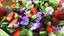 Food From Flowers Wallpaper Free