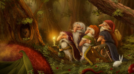 Forest Gnomes Image