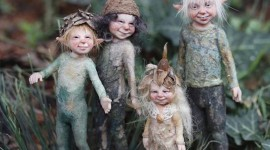Forest Gnomes Photo