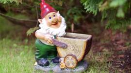 Forest Gnomes Wallpaper For Desktop