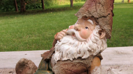 Forest Gnomes Wallpaper For IPhone#1