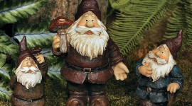 Forest Gnomes Wallpaper Gallery
