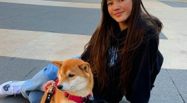 Lily Chee Photo Download