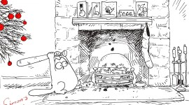 Simon's Cat Photo Free