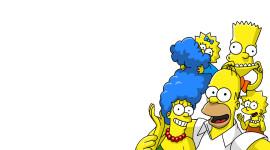 Simpson Frames Image