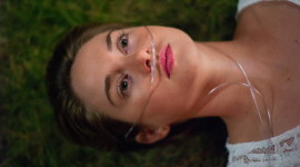 The Fault In Our Stars Wallpaper Full HD