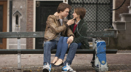The Fault In Our Stars Wallpaper HQ