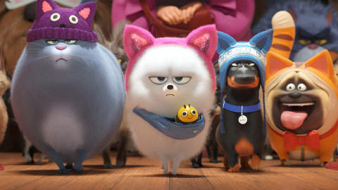 The Secret Life Of Pets 2 wallpapers high quality