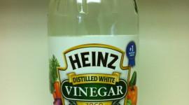 Vinegar Wallpaper Download
