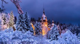 Winter Castle Photo Download