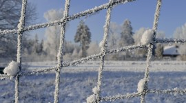 Wire Ice Winter Desktop Wallpaper