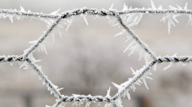 Wire Ice Winter Image Download