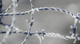 Wire Ice Winter Wallpaper Gallery