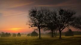 4K Dawn Field Image