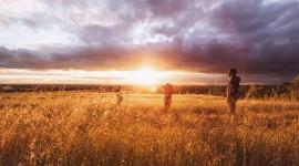 4K Dawn Field Photo Download