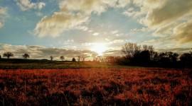 4K Dawn Field Photo Free