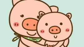 4K Funny Pig Wallpaper For Mobile