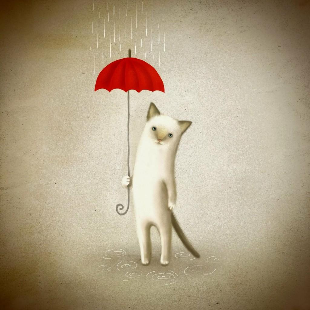 Cat Umbrella wallpapers HD