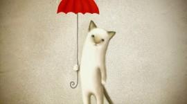 Cat Umbrella Wallpaper