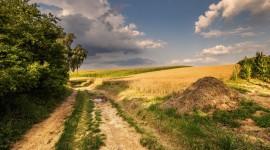 Field Road Best Wallpaper