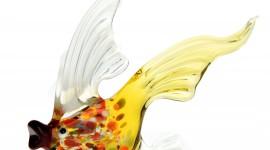 Fish Glass Desktop Wallpaper