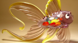 Fish Glass Desktop Wallpaper HD