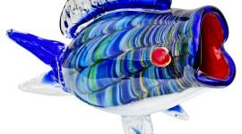 Fish Glass Image