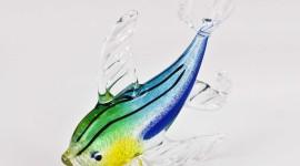 Fish Glass Photo