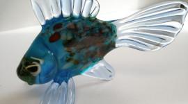 Fish Glass Wallpaper For Desktop