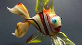 Fish Glass Wallpaper For IPhone