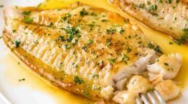 Fish With Lemon Wallpaper HQ