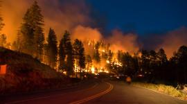 Forest Fires Desktop Wallpaper