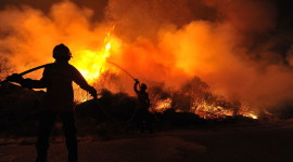 Forest Fires Desktop Wallpaper Free
