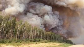Forest Fires Wallpaper Full HD