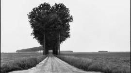 Henri Cartier-Bresson Photos Wallpaper HQ