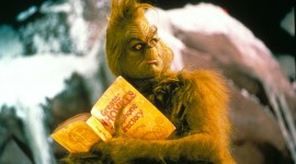 How The Grinch Stole Christmas Photo#3