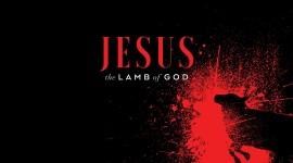 Lamb Of God High Quality Wallpaper