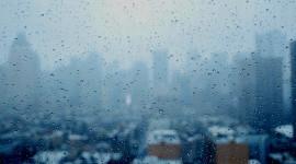 Rainy Window Wallpaper Full HD