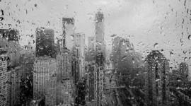 Rainy Window Wallpaper High Definition