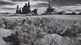 Sebastian Salgado Photography Full HD#2