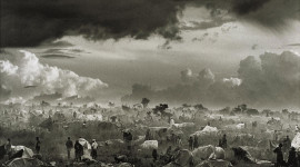 Sebastian Salgado Photography Photo